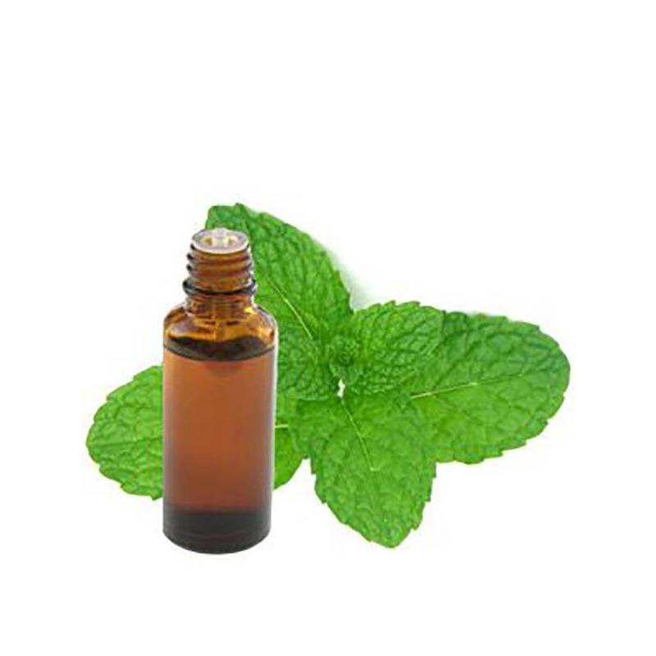 Huile essentielle menthe verte Eco-certifiable, douce et sucrée