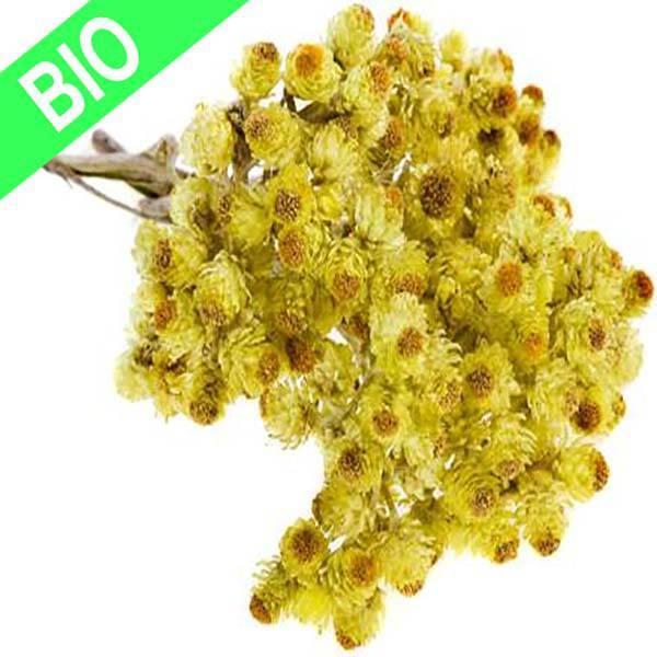 Hydrolat Helicryse Italienne 100 ml