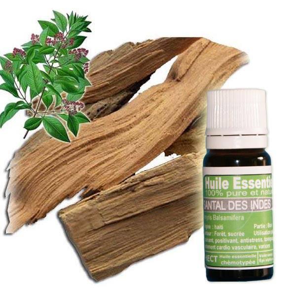 huile essentielle Santal des indes pure et naturelle