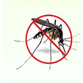 Anti-moustique répulseur aux 3 huiles essentielles, pure en spray 10 ml